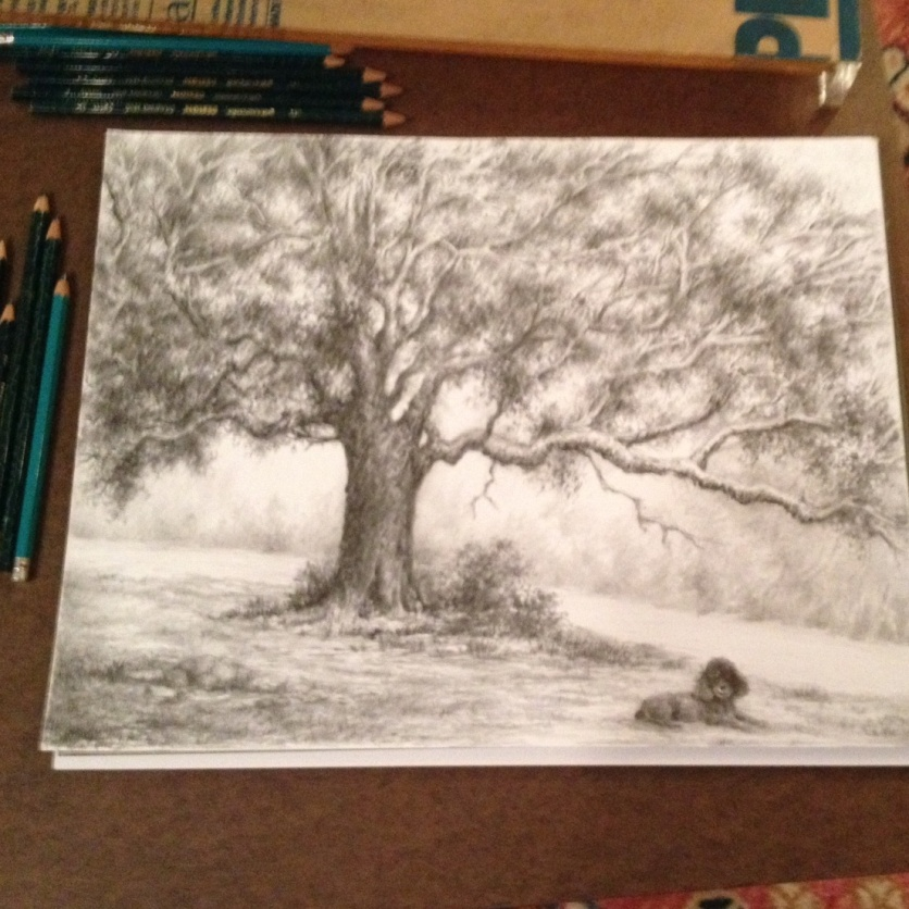 Debrah B.-poodle & tree